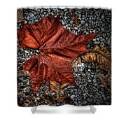 Fall Leaf Shower Curtain