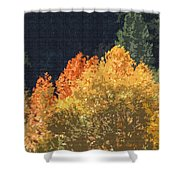 Fall Leave On The East Verde River Shower Curtain