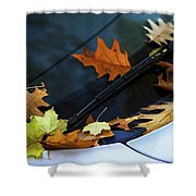 Fall Leaves On A Car Shower Curtain