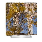 Fall Leaves On Open Windows Jerome Shower Curtain