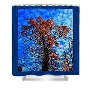 Fall Majesty Shower Curtain