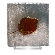 Fall Meets Winter Shower Curtain
