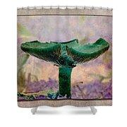 Fall Mushroom 17 Shower Curtain