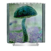 Fall Mushroom 19 Shower Curtain