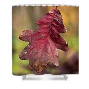 Fall Oak Leaf Shower Curtain