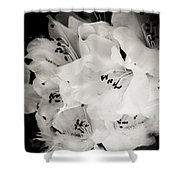 Fall Of Flowers Shower Curtain