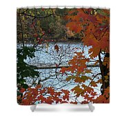 Fall On The Shetucket Shower Curtain