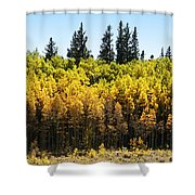 Fall Panorama Shower Curtain