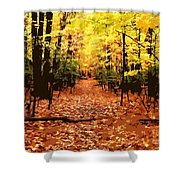 Fall Path Shower Curtain