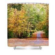 Fall Pathway Shower Curtain by Judy Vincent