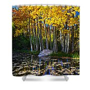 Fall Pond In Mammoth Shower Curtain