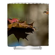 Fall Puddle Shower Curtain