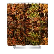 Fall Reflections Shower Curtain by Karol Livote