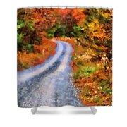 Fall Road To Paradise Shower Curtain