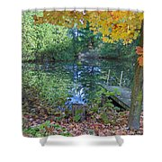Fall Scene By Pond Shower Curtain