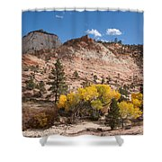 Fall Season At Zion National Park Shower Curtain