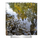 Fall Series 34 Shower Curtain