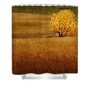 Fall Tree And Field #1 Shower Curtain