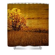 Fall Tree And Field #2 Shower Curtain