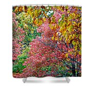 Fall Tree Leaves Shower Curtain