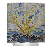 Fall Tree On The Rocks Shower Curtain