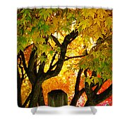 Fall Trees On A Country Road 3 Shower Curtain