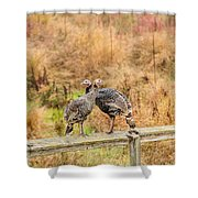 Fall Turkeys Shower Curtain