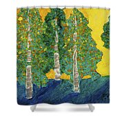 Fall Turn At Sunset Shower Curtain