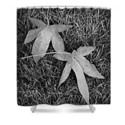Fallen Autumn Leaves In The Grass During Morning Frost Shower Curtain