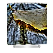 Fallen Leaf Shower Curtain