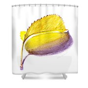 Fallen Leaf Yellow Shadows Shower Curtain