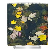 Fallen Leaves 2 Shower Curtain