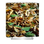 Fallen Leaves Shower Curtain