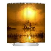 Fallen Tree In Misty Sunrise At Shower Curtain