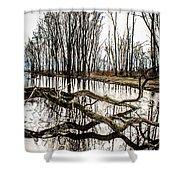 Fallen Tree Reflection Shower Curtain