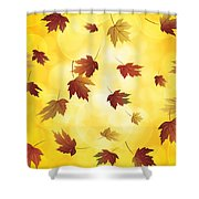 Falling Maple Leaves In Autumn Illustration Shower Curtain