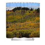 Falling On The Deserts Edge Shower Curtain