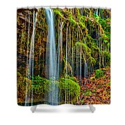 Falls And Moss Shower Curtain
