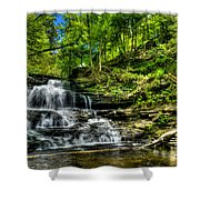 Falls And Steps Shower Curtain