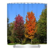 Falls Colours Shower Curtain