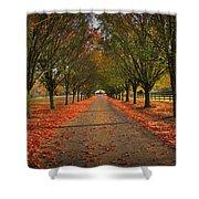 Fall's Driveway Shower Curtain