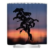 Falls Dying Breath Shower Curtain