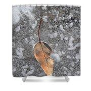 Fall's Fallen Meets Spring Sunshine Shower Curtain