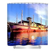 Falls Of Clyde Shower Curtain