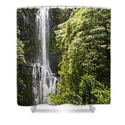 Falls On The Road To Hana Shower Curtain