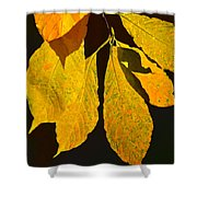 Fall's Purest Gold Shower Curtain