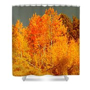 Falls Trees Shower Curtain