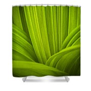 False Hellebore Abstract Shower Curtain