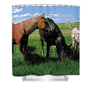 Family Meal Shower Curtain