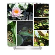 Family Of Frogs Collage Shower Curtain